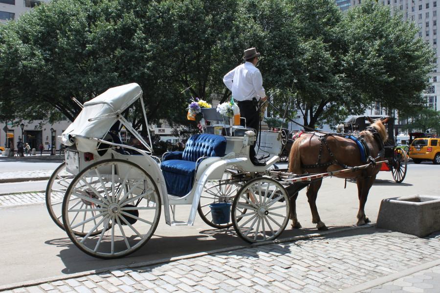 Häst och vagn är en vanlig syn i och intill Central Park. Med bilden följer ljud och doft.