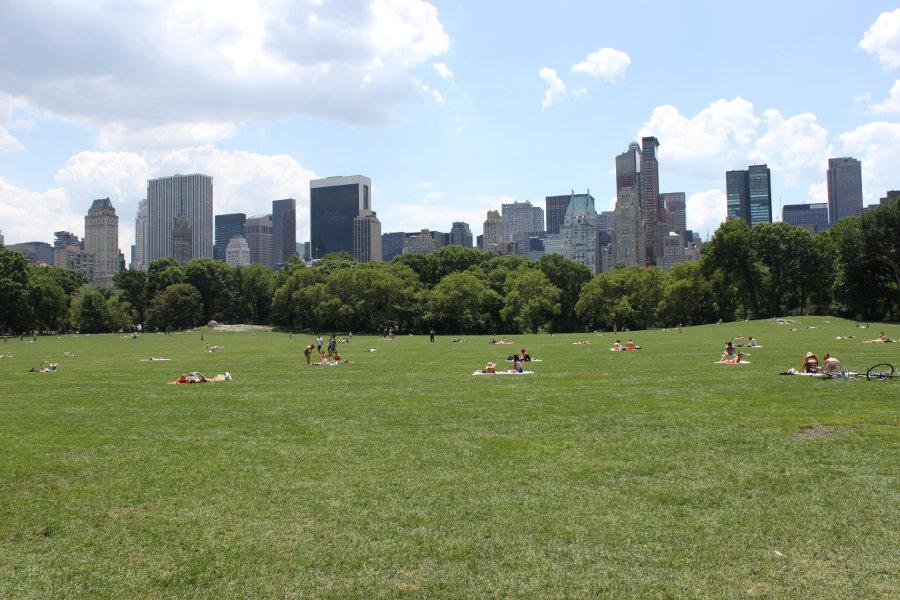 Människor solar på en stor gräsmatta i södra Central Park (vy söderut).