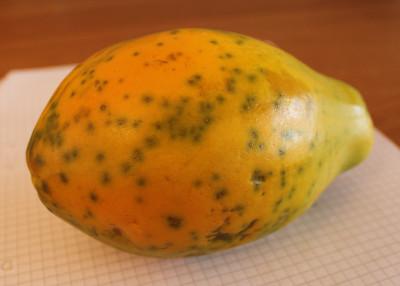 En mogen papaya