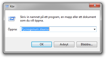 Dialogrutan Kör i Windows 7.