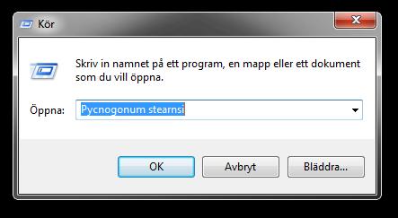 Dialogrutan Kör i Windows 7.