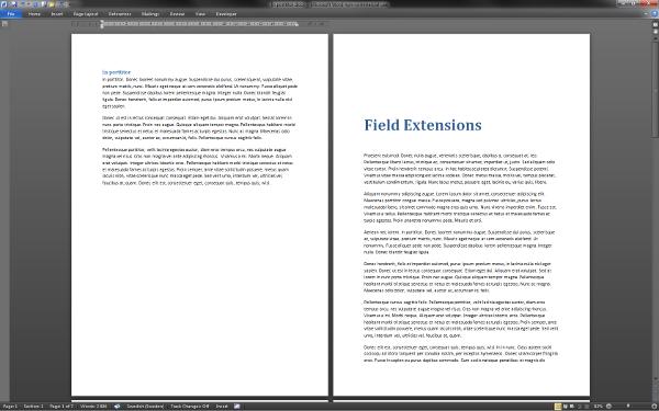 Screenshot from Microsoft Word